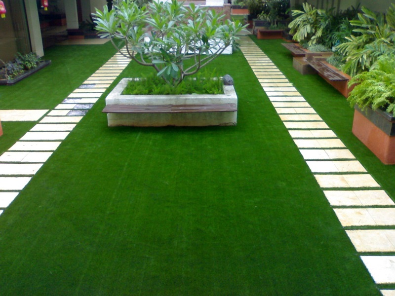 Thảm cỏ sân vườn 8mm G8 - cỏ đậm