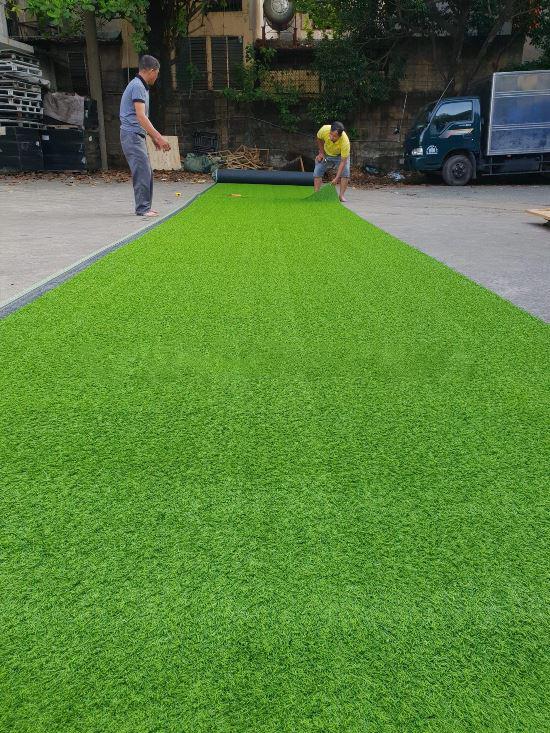 Thảm cỏ sân vườn G10 cao 2cm