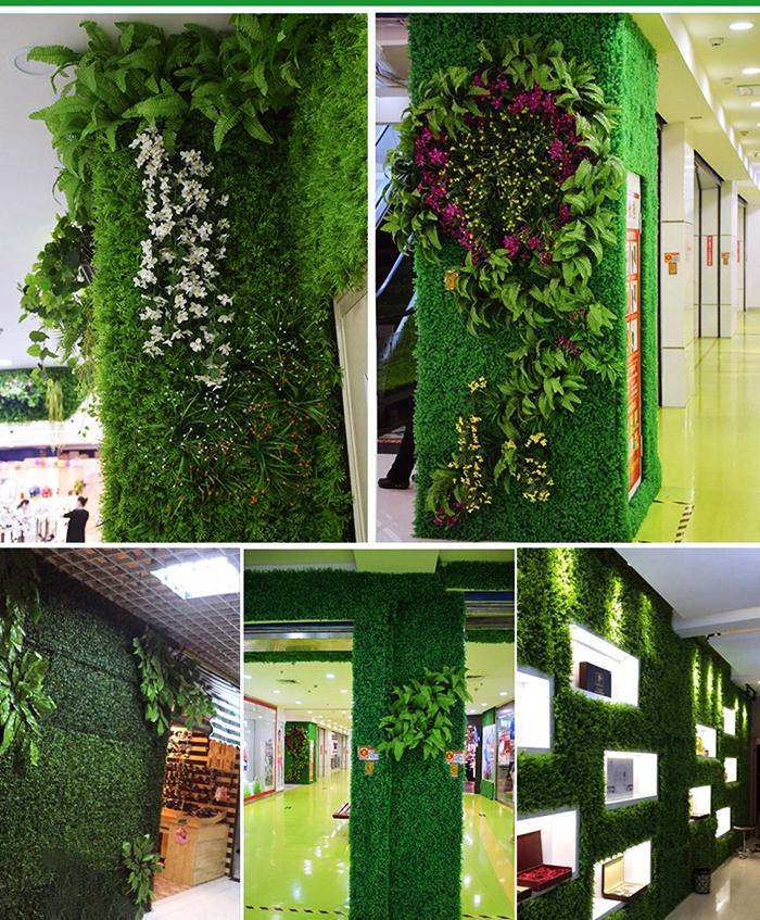 Thảm cỏ xoong trang trí tường