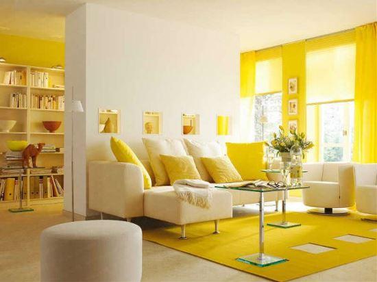 Tuổi Dậu nên chọn màu thảm trải sàn màu gì trong năm Kỷ Hợi